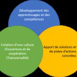 Le Co-Développement